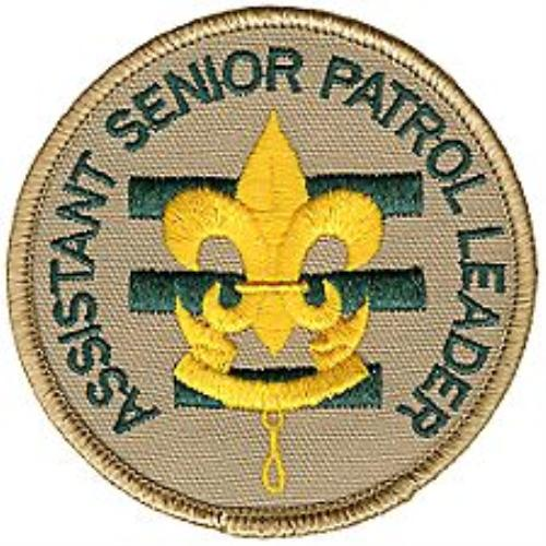 Image result for aspl patch for bsa