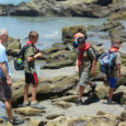 Our scouts went to the tide pools on Scripps beach. Afterwards they went to the Scripps Aquarium which is nearby.
