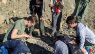 Troop Alumni Daniel D. is studying geology, and counseled Geology Merit Badge at Torrey Pines State Beach.